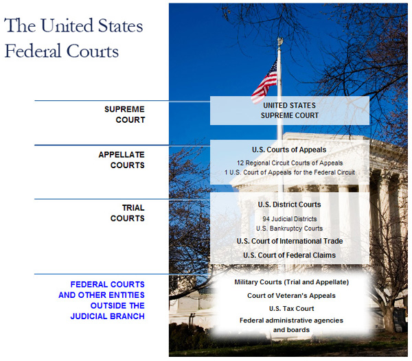 state and federal courts